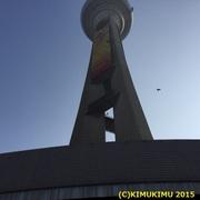 2015-01-11T15_17_54-8d518.jpg